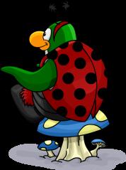 Penguin421