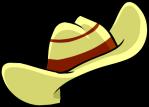 Cowboy Hat2