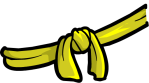 Yellow Belt2